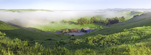 Pacific Coast Wine Trail: A Secret Spot